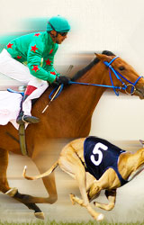Off Track Betting Phx Az - image 6